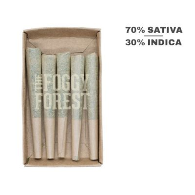 Sour Pineapple | Buy Cannabis Weed Joints Online in Canada - The Foggy Forest