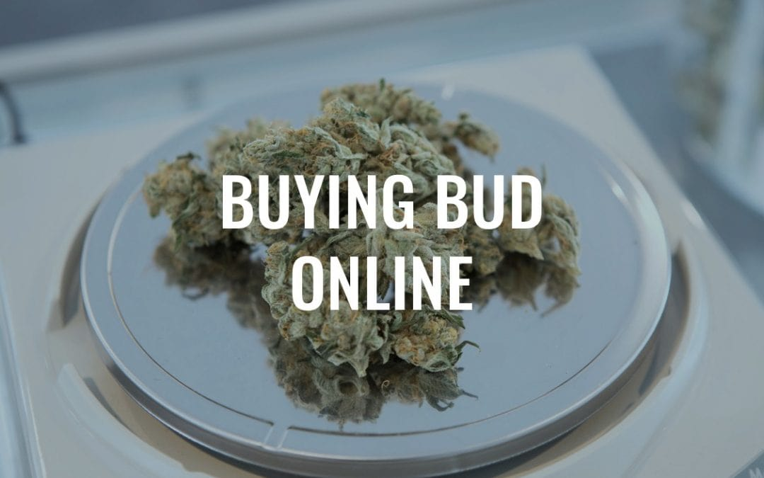 What You Need to Know About Buying Bud Online in Canada